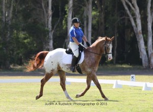 Kerrie Payne and Over Insured